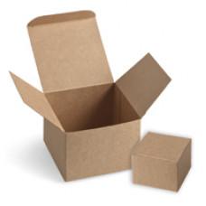 Avoid-a-cache Starter Kit - NEW